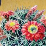 Retro kaktusy v Botanické
